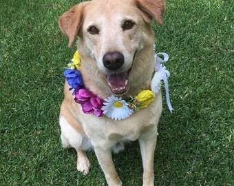 Flower Dog Collar, Photo Shoot Dog Floral Wreath, Dog Flower Crown, Rainbow Dog Wreath, Dog Birthday Collar, Big Dog Boho Engagement Photo