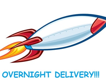 OVERNIGHT DELIVERY - Ship my order overnight