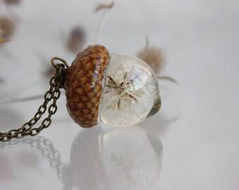 The real dandelion with acorn hat. Suspension acorn. The real acorn cap. Pendant epoxy resin.  Pendant sphere 19 mm
