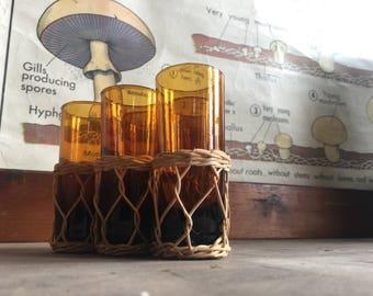 Amber Glassses in Wicker Holders