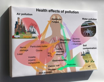 Canvas 16x24; Health Effects Of Pollution On Humans