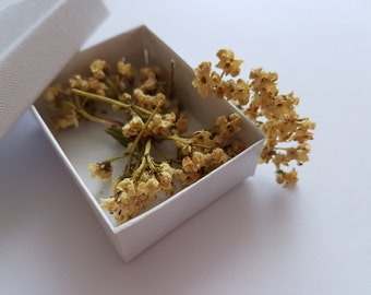 Dried flowers for resin jewellery and craft.