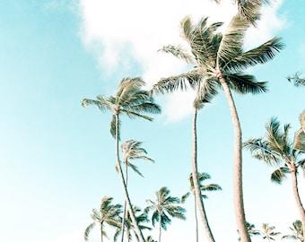Large Tropical Wall Art, Hawaii Photography, Tropical Beach Decor, Beach House Wall Decor, Beach Photography, Palm Trees, Island Beach Decor