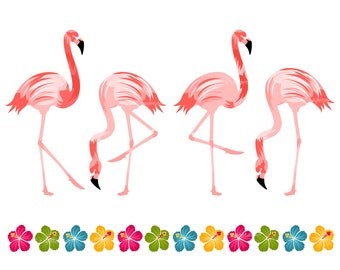 Flamingo Birds Set, Hibiscus Border, Vector Illustrations, Personal Use, Commercial Use