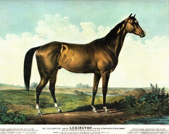 Currier and Ives Extra Large print The Racehorse Lexington. The page is approx. 18 1/2 Inches wide and 14 inches tall.