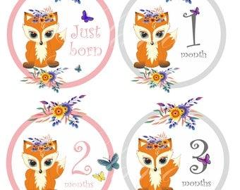 Month Stickers Baby Month Stickers Milestone Stickers Baby Week Stickers Free Gift Baby Shower Monthly Baby Decals Baby Fox Stickers