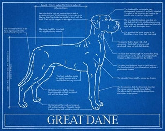 Great Dane Blueprint Elevation / Great Dane Art / Great Dane Wall Art / Great Dane Gift / Great Dane Print