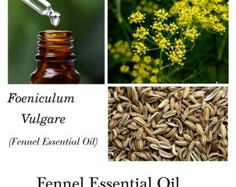 Fennel Essential Oil, Sweet Fennel Essential Oil, Foeniculum vulgare, 100% Pure Authentic Fennel EO
