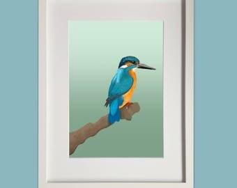 Woodpecker & Kingfisher A4 Prints - Handdrawn Digital Artwork