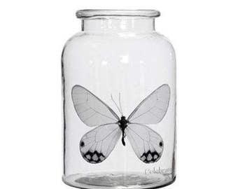 Lene Bjerre Large Butterfly Hurricane Lantern