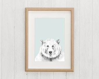 POLAR Bear Illustration | Macaroom Kids
