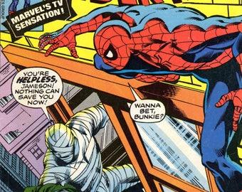 The Amazing Spider-Man #189