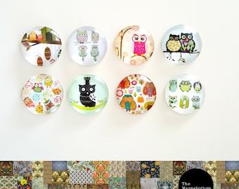 Owl Glass Cabochon Fridge Magnet Set