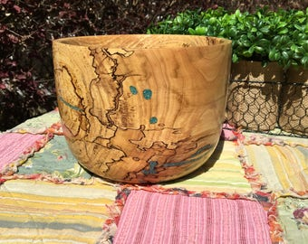 Spalted Elm with Turquoise Inlay/ Tung oil finish #3277