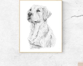Labrador Retriever, Lab Art, Labrador Art. Yellow Lab. Lab Dog Art, Yellow Labrador, Dog Print, Lab Art, Labrador Gifts, Labrador Wall Art