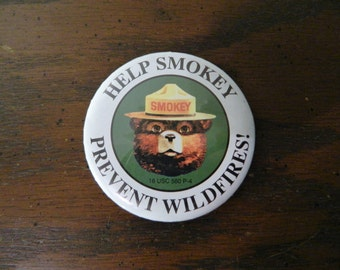 Vintage Smokey Bear Help Prevent Forest Fires Button