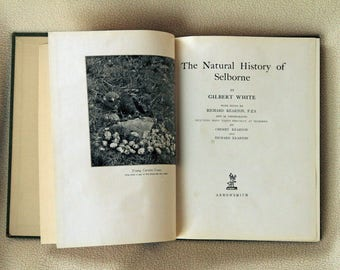 The Natural History of Selborne by Gilbert White - Edited with Photographs by Richard and Cherry Kearton - 1924