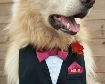 Dog Tuxedo, Wedding Tuxedo, Dog Wedding, Ring Bearer, Dog Ring Bearer, Dog Wedding Collar, Dog Collar, Personalised Collar, Best Dog