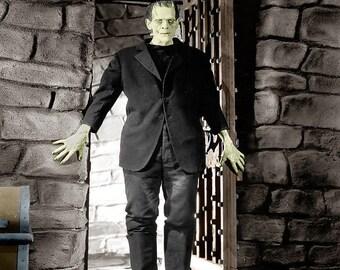 FREE SHIPPING Frankenstein movie poster 11x17