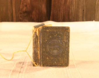 1863 Grimalkin Family Book - Free Shipping