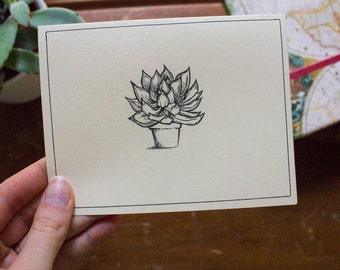 Botanical Friend - Hand Designed Card Packs
