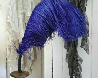 Vintage milinary ostrich feather. Rich purple plumes. Ostrich feathers. Display. Hat making.