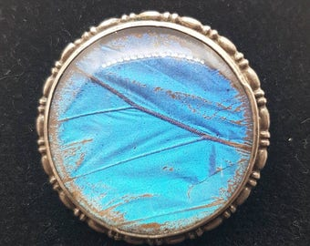 Exceptional Large Circular Morpho Butterfly Wing Brooch