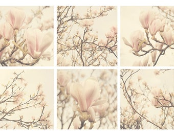 Magnolia set of six prints, magnolia prints, magnolia tree bedroom wall decor ideas, neutral bedroom decor art prints art inspired by nature