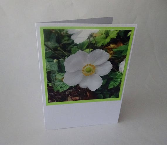 Mother's Day Card - Japanese Anemone Flower - #722