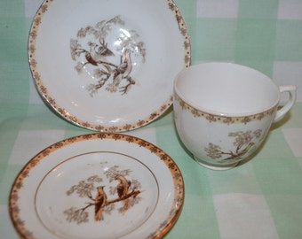 Sale. Trio, cabinet cups, decorated with birds, China cups,  AF