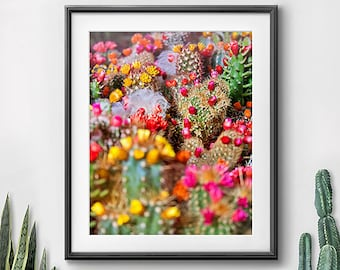 Etonnant Colorful Wall Art, Art Prints, Photography, Pink Yellow Green, Cactus Plant,