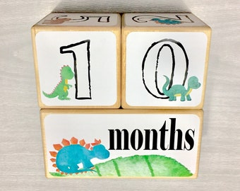 Baby Photo Prop - Baby Age Blocks - Baby Milestone Blocks - Baby Gift - Dinosaur Nursery - Baby Accessories - Baby Shower Gift - Dinosaurs