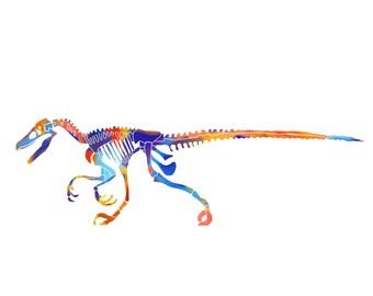 Raptor Dinosaur Fossils Watercolor Print