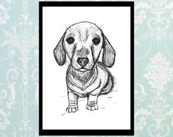 Dog puppy dachshund doggy illustration pet black white chic pet