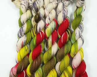 Herb Garden of mini-skeins hand dyed yarn 20 g