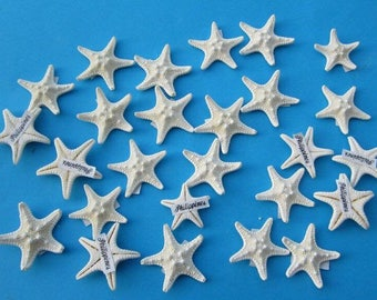 FREE SHIPPING!  11 Knobby starfish, off white, 1 1/2-2 1/2 inches, for crafts, weddings, home decor