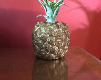 Pineapple planter, WITH air plant, unique house plant gift