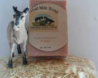 Pumpkin Goat Milk Soap