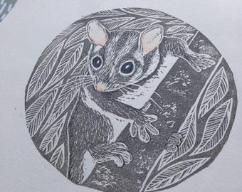 Leadbeaters Possum / Marsupial / Nursery / Australian/ Original Artwork / Lino cut / Block Print