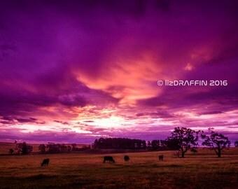 "Farming Landscape Sunset Digital Download Print Photo Digital Fine Art Photography ""Fire Sunset"""