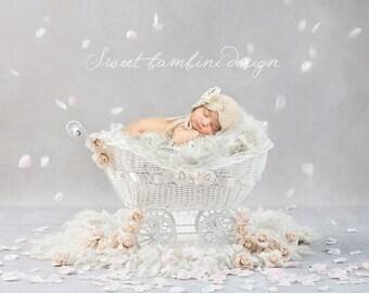 Vintage Newborn Digital Background - Rose Petal Carriage
