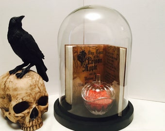 Snow White/ snow white home decor / Snow White display dome / Snow White bell jar / glass display dome