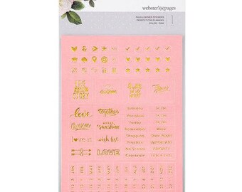 Webster's Pages Pink Color Crush Faux Leather Stickers