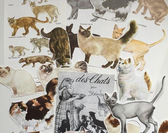 Cats Ephemera Paper Pack. Vintage 1970s and 1960s paper for scrapbooking and journaling