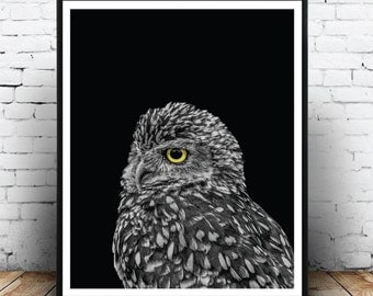 Owl Print, Owl Printable, Bird Printable Art, Bird Print, Black and White, Affiche Hibou, Affiche Oiseau, Digital Instant Download