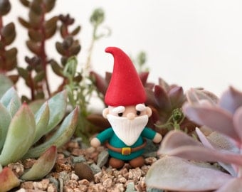 Little Gnome Figurine | Terrarium Decor | Plant Decor | Garden Decor | Terrarium Accessories | Terrarium Kit
