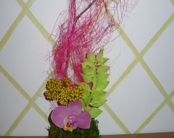 kokedama bouquet to ask Orchid
