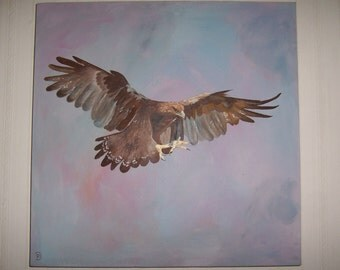 Original oil painting of a Golden Eagle on a hard canvas with a box frame 51cm x 51cm