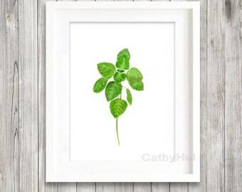 Oregano, print of watercolour painting, Herb painting, Botanical Print, green home decor art print, kitchen decor