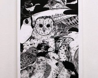 Serigraphy - birds